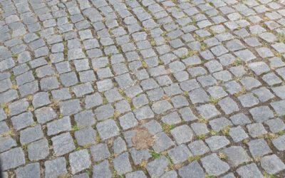 Ostsee Radweg – Ausreißer